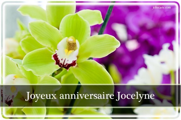 Anniversaire Jocelyne Ccomaroc